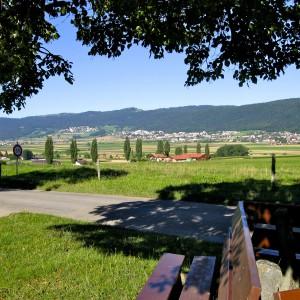 Bosquets, arbres isolés, haies, allées, vergers, prairies, damier de cultures : Nord du Val-de-Ruz vu depuis Savagnier