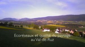 Film-Ecoreseau-VdR